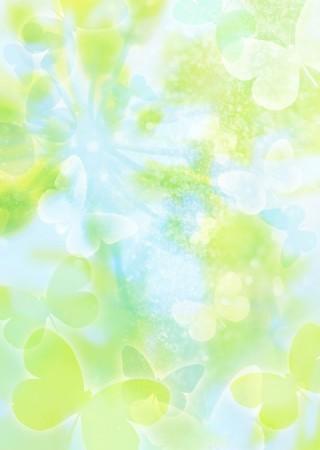 花卉0146