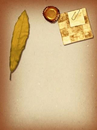 懷舊紙 樹葉 牛皮紙圖片